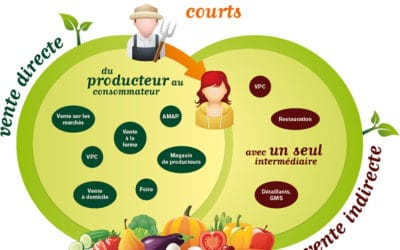 circuits_courts