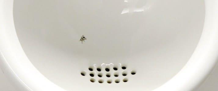 nudge-une-mouche-dans-urinoir