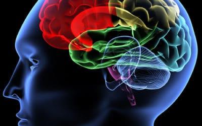 neuromarketing-neurosciences